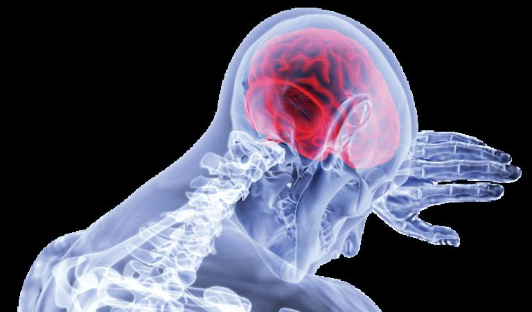 Hal-hal yang Bisa Merusak Otak
